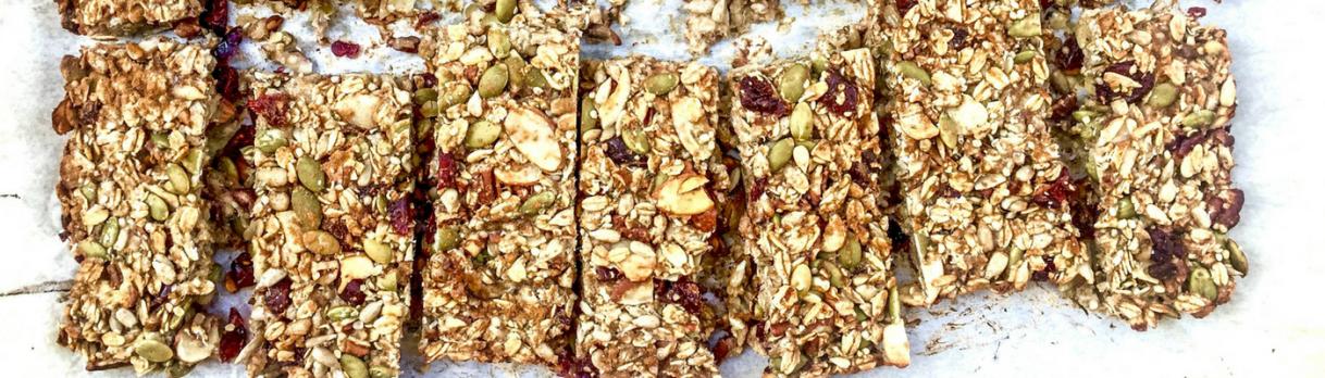 NEW Recipe: Seedy ProteinBars